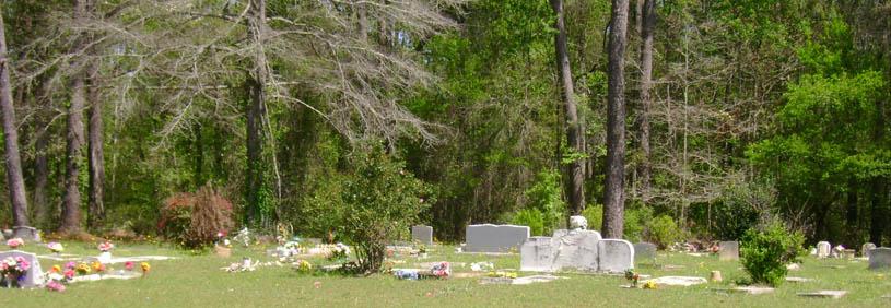 Hyams Landscaping And Garden Center : Gadsden county florida genealogy resources